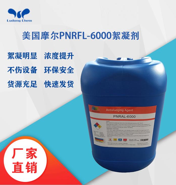 美国摩尔絮凝剂PNRFL-6000